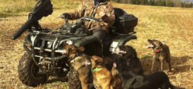 Lazy Dog Trainer III, Duke Ferguson Obedience With 5 Dogs & A Four Wheeler