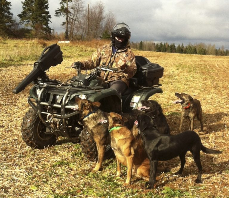Lazy Dog Trainer III, Duke Ferguson Obedience With 5 Dogs & A Four Wheeler