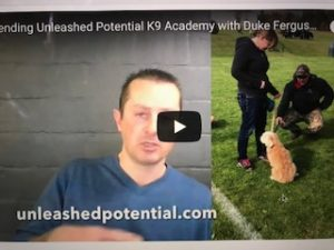 """School for Dog Trainers, Unleashed Potential K9 Academy with Duke Ferguson….""""Testimonial"""""""
