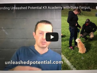 "School for Dog Trainers, Unleashed Potential K9 Academy with Duke Ferguson….""Testimonial"""