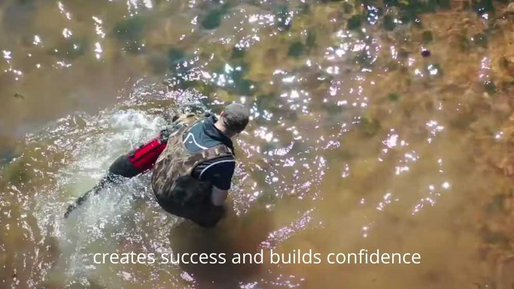 Xdog vest on dog swimming in the water