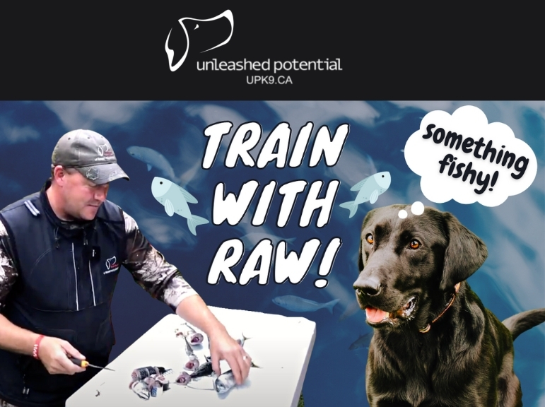 train with raw fish thumbnail